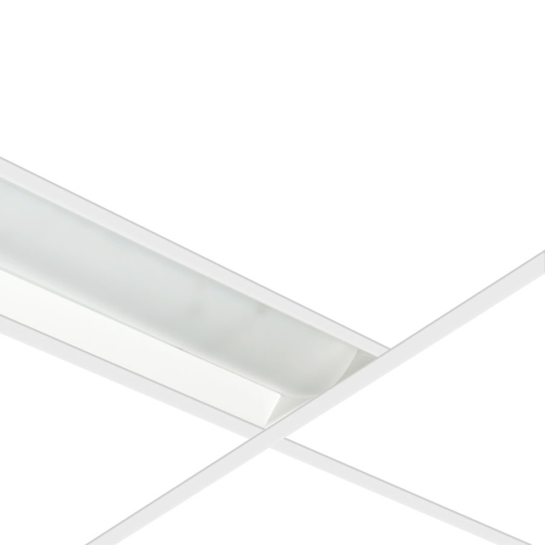 ROMA LED